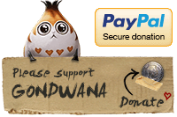PayPal secure donation. Support Gondwana!